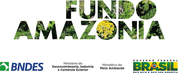 FUndo-amazônia-composto