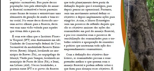 (Português do Brasil) Boletim Técnico do IFT apresenta metodologia para aplicação do Marco Estratégico em empreendimentos florestais comunitários