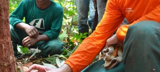 Seminário sobre Manejo Florestal Comunitário em Unidades de Conservação da Amazônia Brasileira