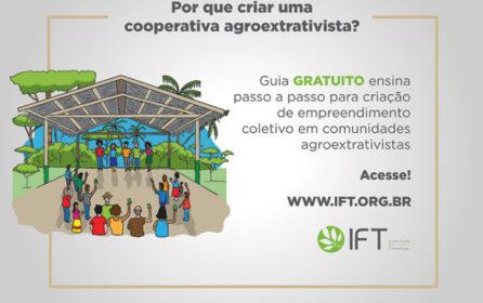 Guia apresenta passo a passo para criação de cooperativas agroextrativistas