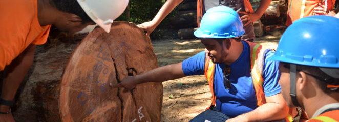 Curso de Gerenciamento da Extração no Manejo Florestal inicia safra 2018 na Resex Verde para Sempre