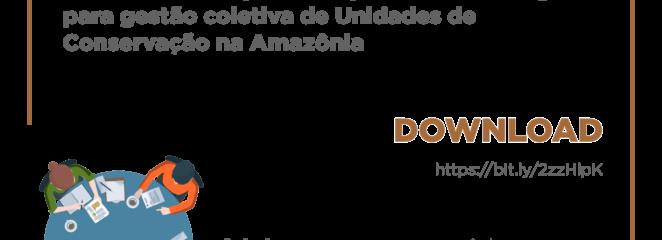 Boletim técnico aponta estratégias para governança florestal na Amazônia