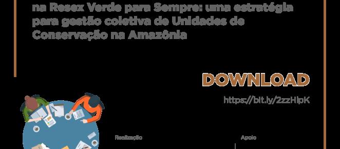 (Português do Brasil) Boletim técnico aponta estratégias para governança florestal na Amazônia