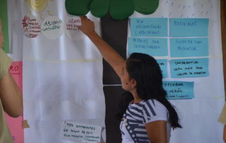 Reservas Extrativistas do Marajó iniciam elaboração de Planos de Negócio para fortalecer as cadeias de valor do açaí e da madeira